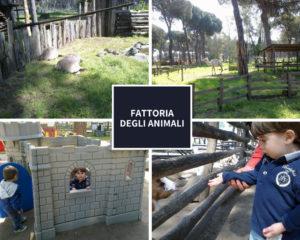 fattoria animali castel fusano